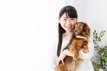 犬好き、動物好き、ペット