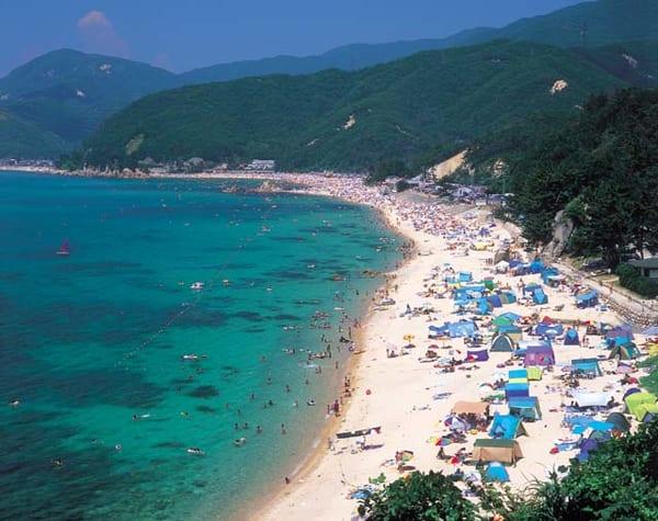 海、夏、福井